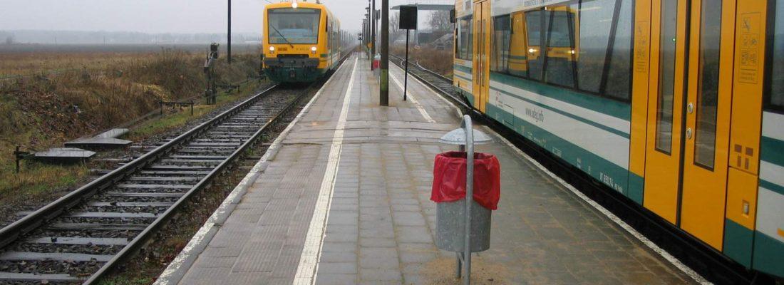 Regioshuttle der ODEG treffen sich in Friedersdorf