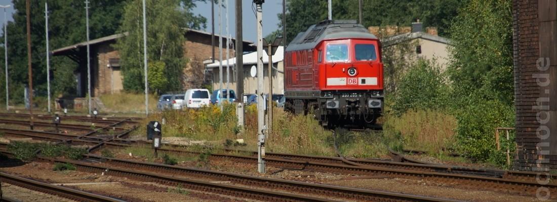 Diesellok und Güterwagen im Güterbahnhof Horka