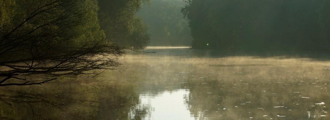 Der Finowkanal am Morgen