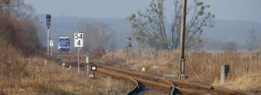 VT 013 der Niederbarnimer Eisenbahn bei Einfahrt in den Bahnhof von Niederfinow
