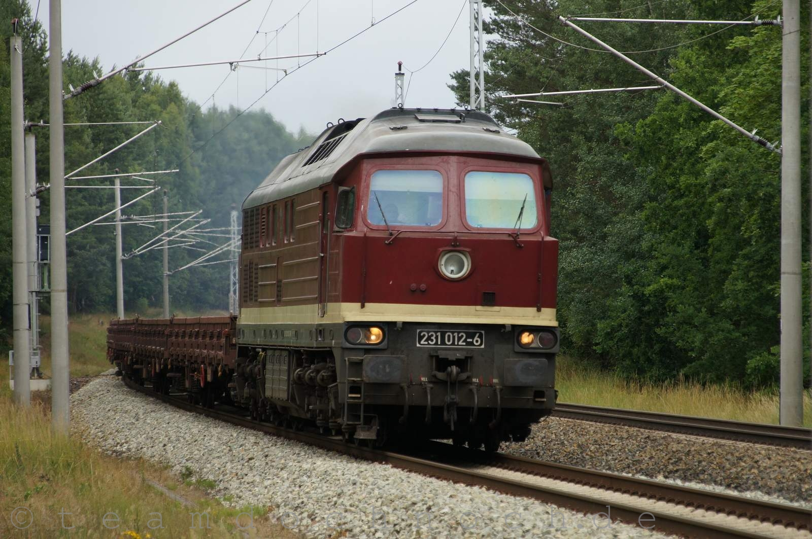 DSC08804