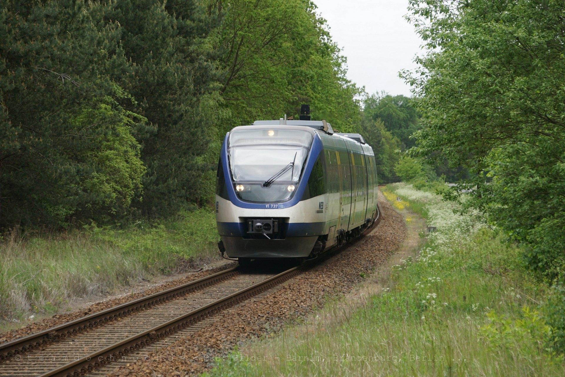 VT737 der NEB als RB12 nach Löwenberg am Einfahrsignal von Vogelsang