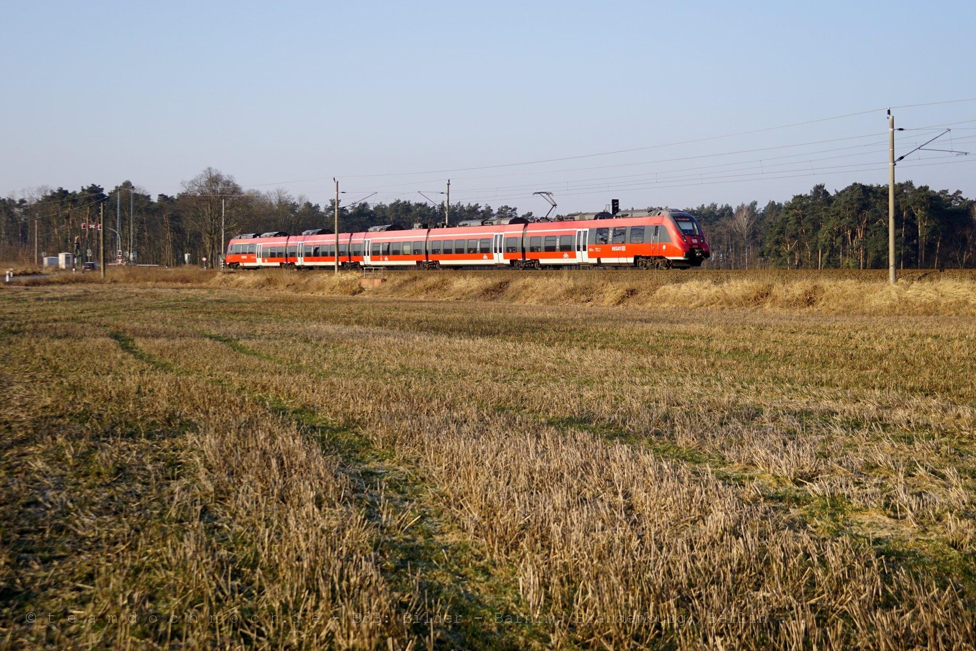 Ein Zug am Morgen