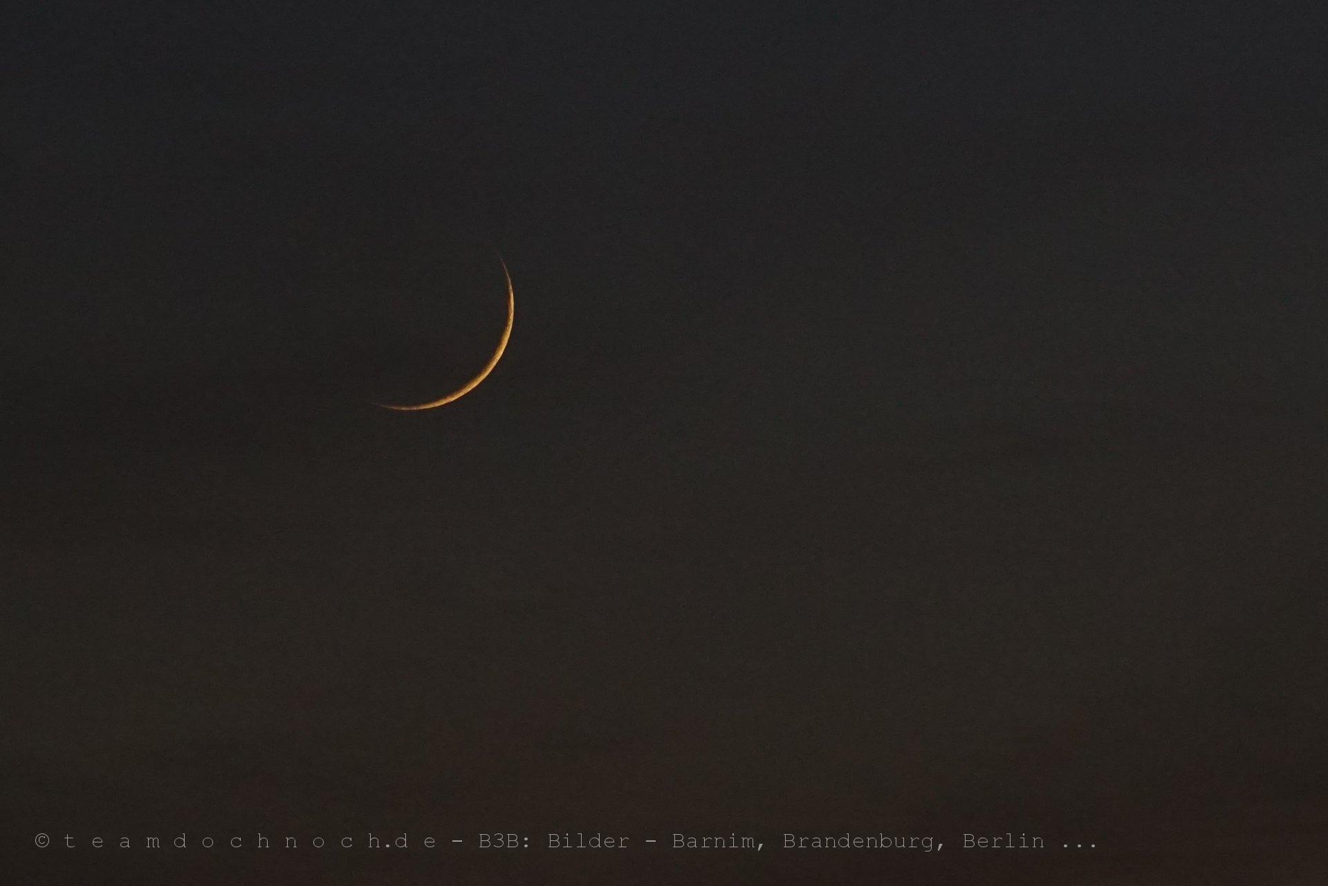 Die frische Mondsichel