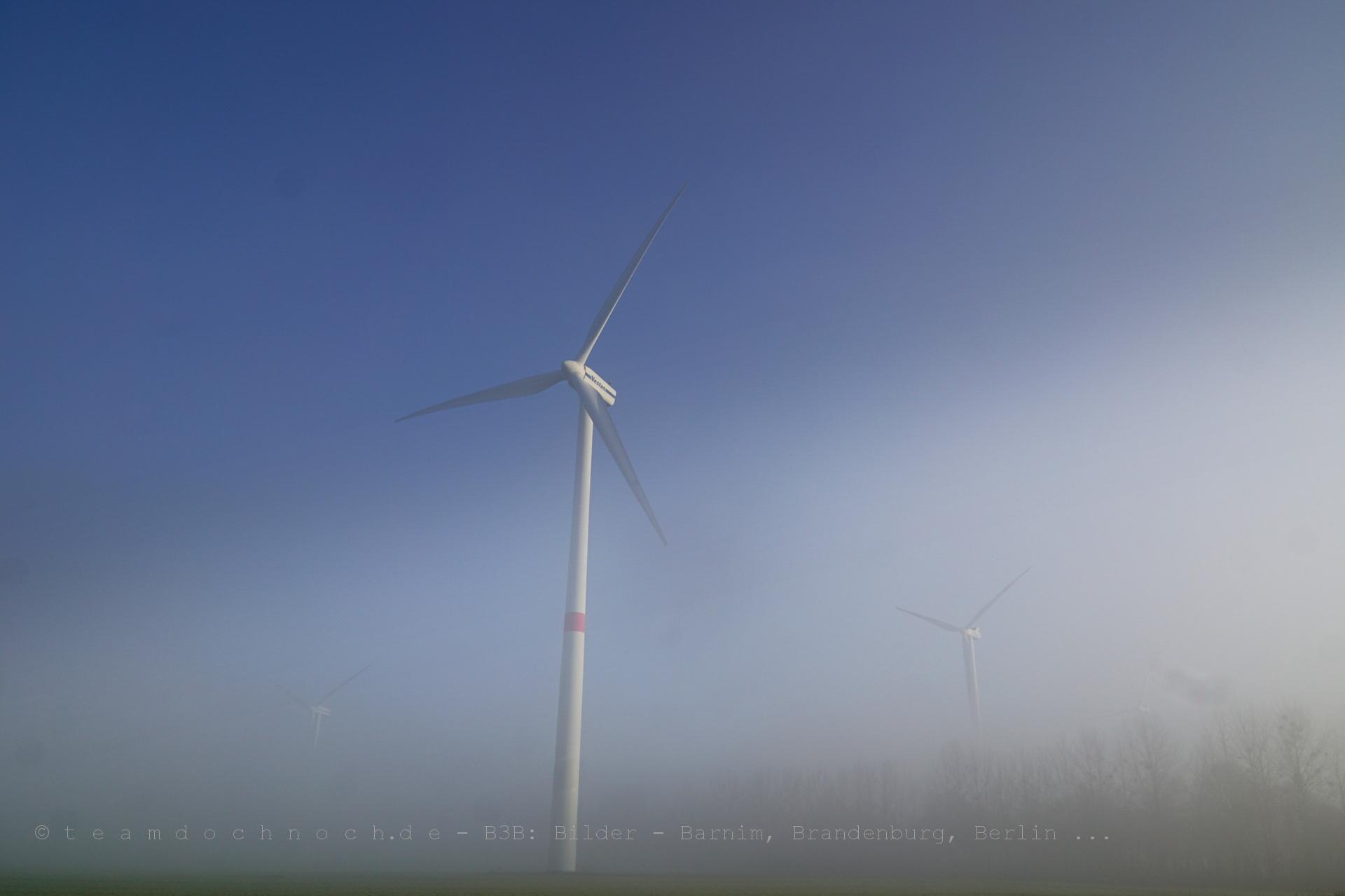 Windmühlen im Bodennebel