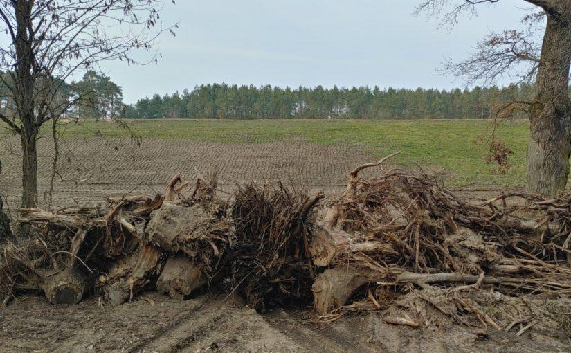 Der Heber vom Mäckersee ist zurückggebaut