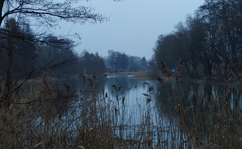 Ein dunkelgrauer Morgen am Finowkanal