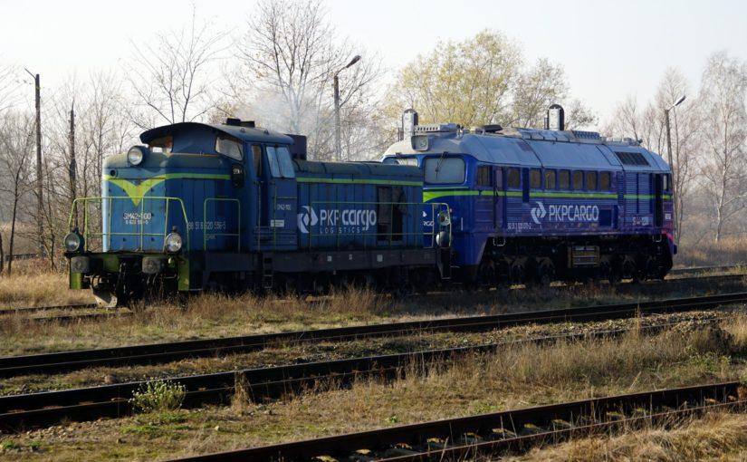 SM42-1100 und ST44-1206 stehen im Bahnhof Krosno Odrzańskie