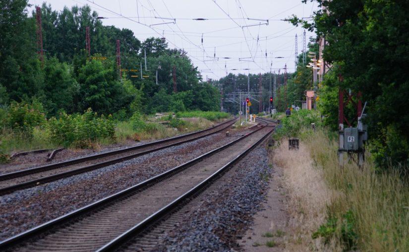 Zugwewachsenes Gelände am Bahnhof Herzberg (Elster)