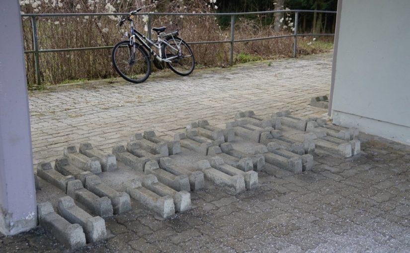 Fahrradquäler im Bahnhof Mühlheim am Inn