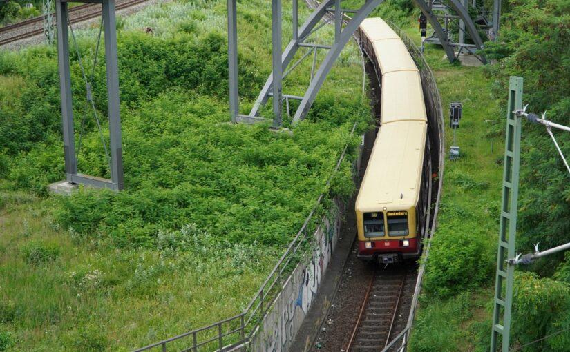 S8 nach Blankenburg im Einschnitt unter dem Schwedter Steig