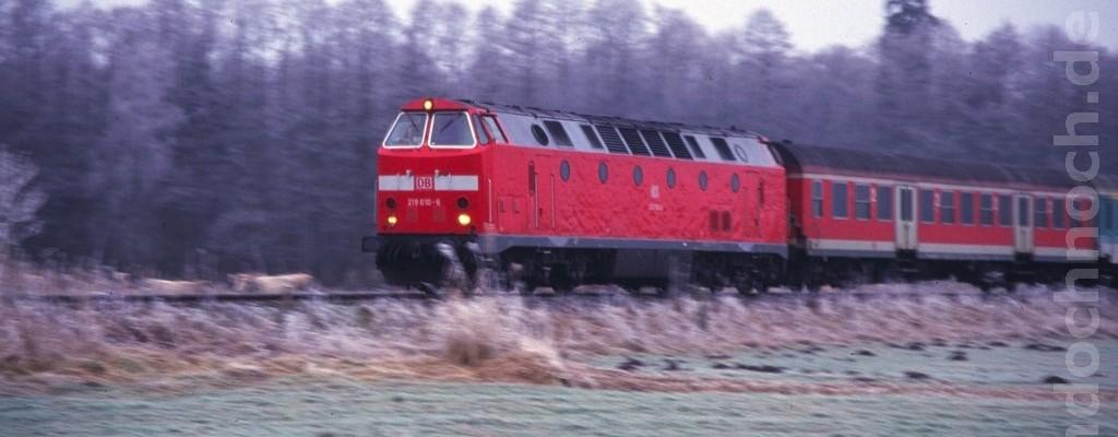 219 010-6 auf der Heidekrautbahn nach Norden