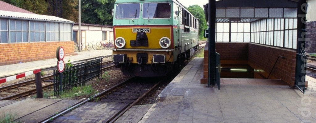 SU46-037 in Forst
