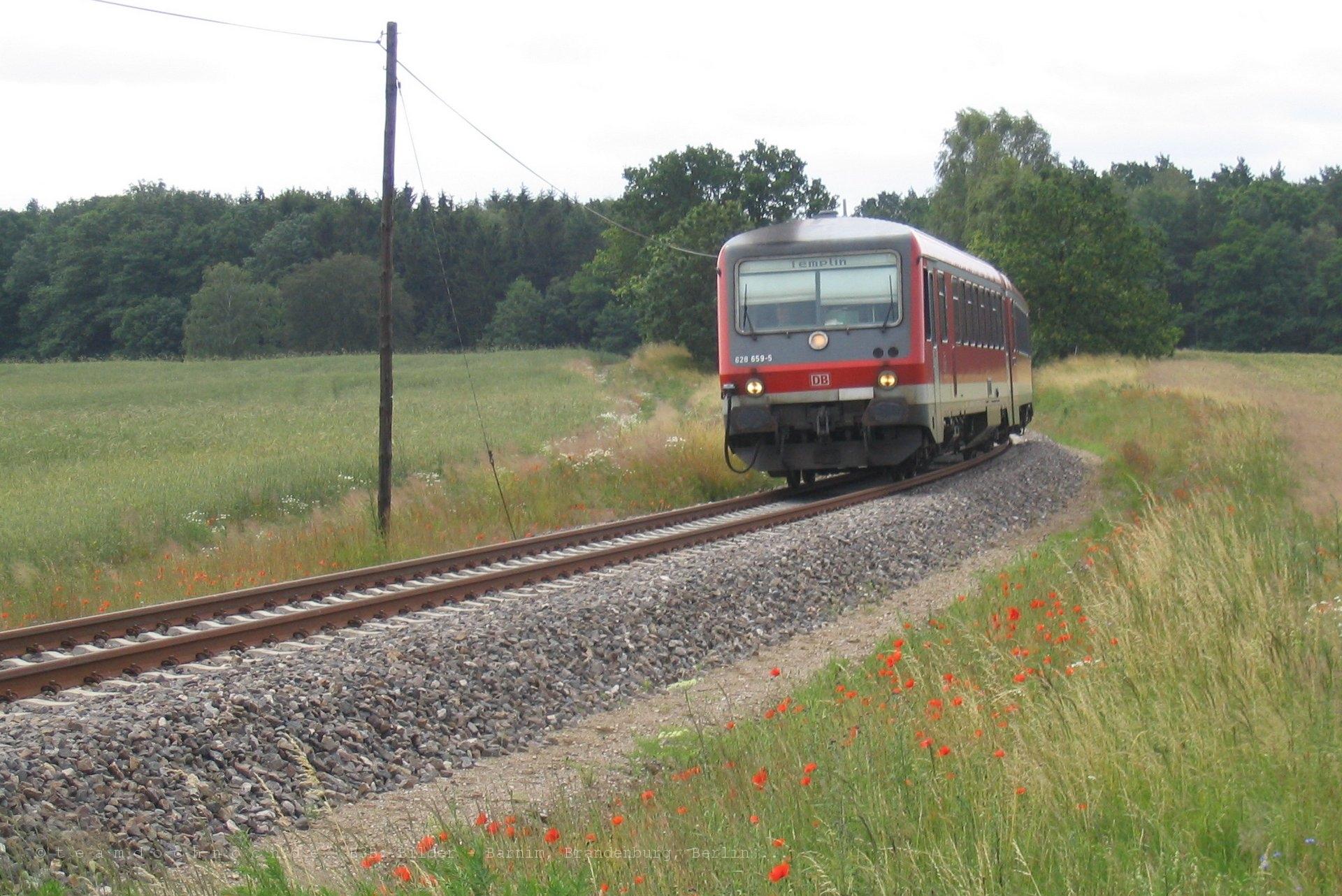 628 659-5 auf dem Weg nach Templin kurz vor dem Bahnhof Friedrichswalde