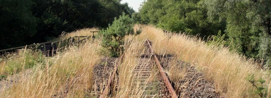 Bahnreste in Oderberg