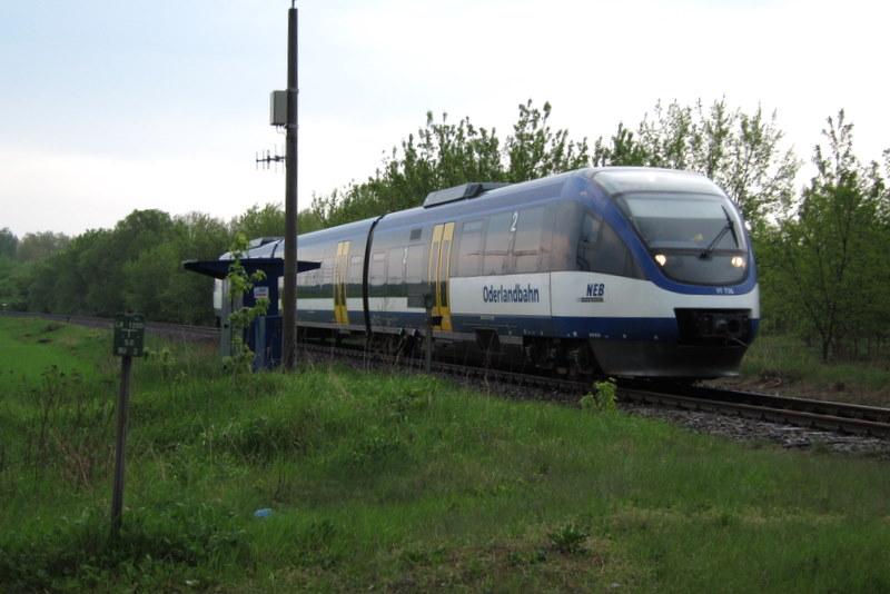 VT 736 Oderlandbahn auf der Heidekrautbahn