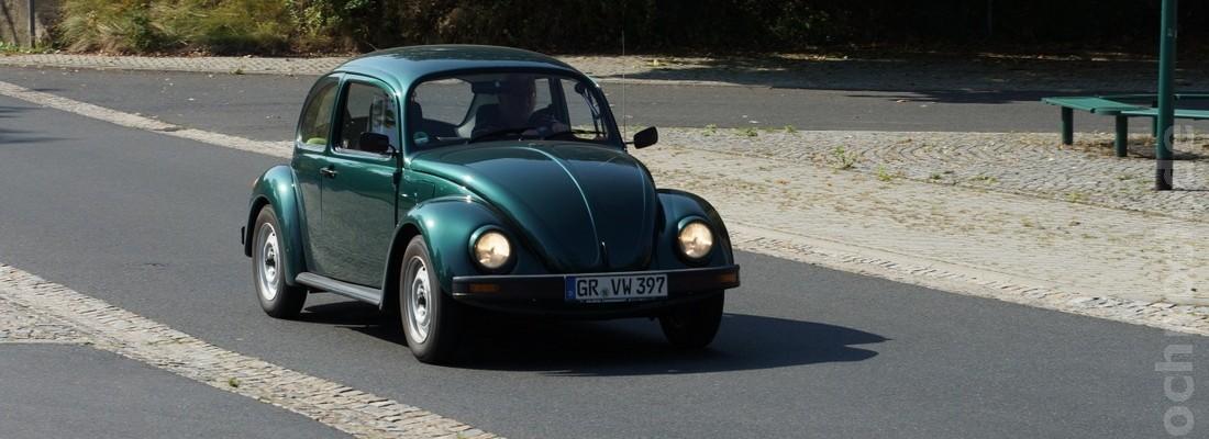 Käfer in Horka