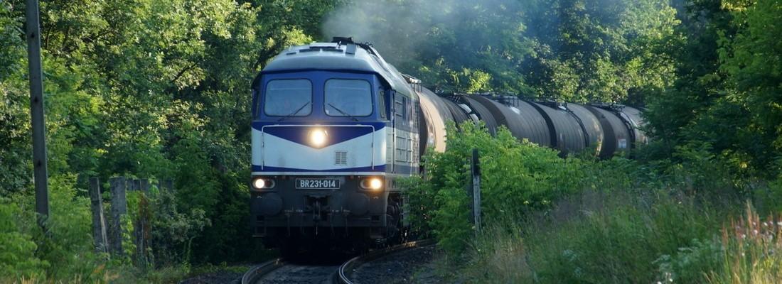 231-014 bei der Einfahrt in den Bahnhof Guben