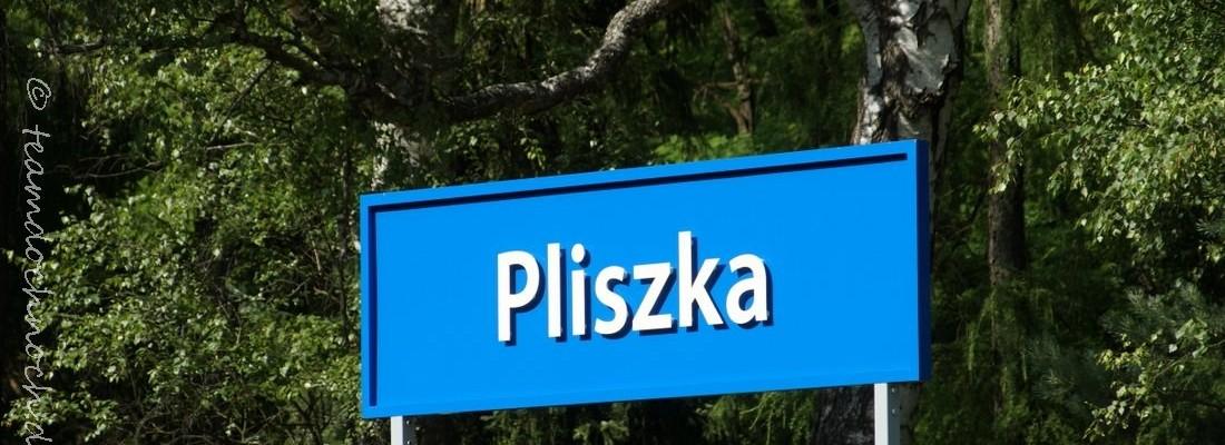 Bahnhof Pliszka
