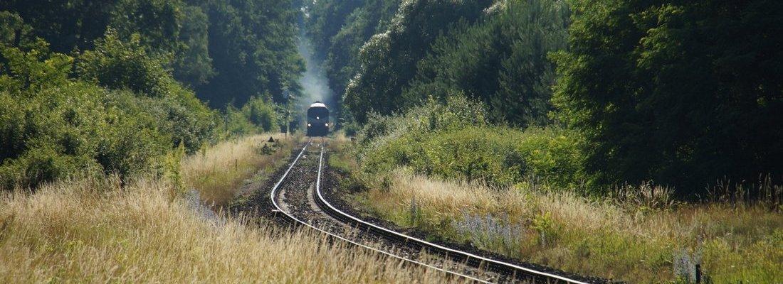 231-014 nähert sich der Ausweichstelle bei Szczawno