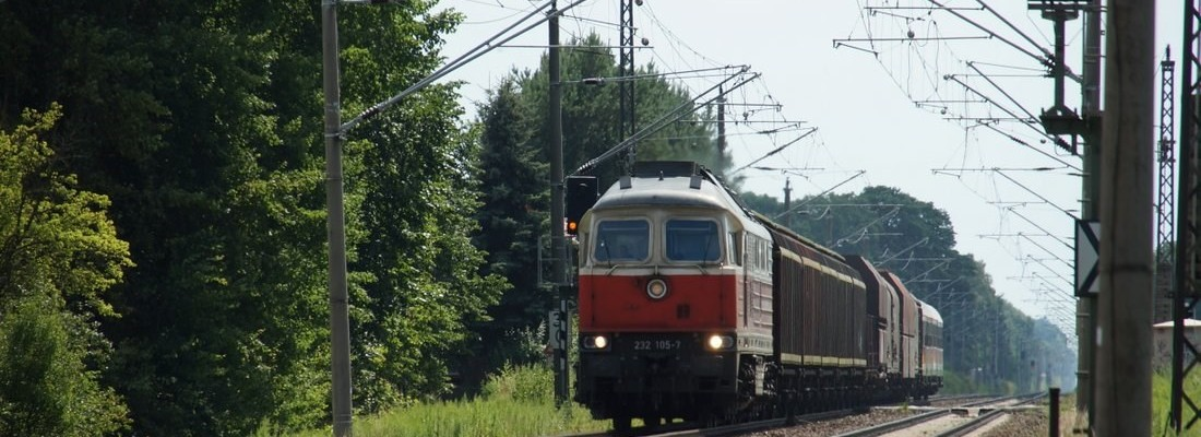 232 105-7 mit einem kurzen Güterzug bei Danewitz