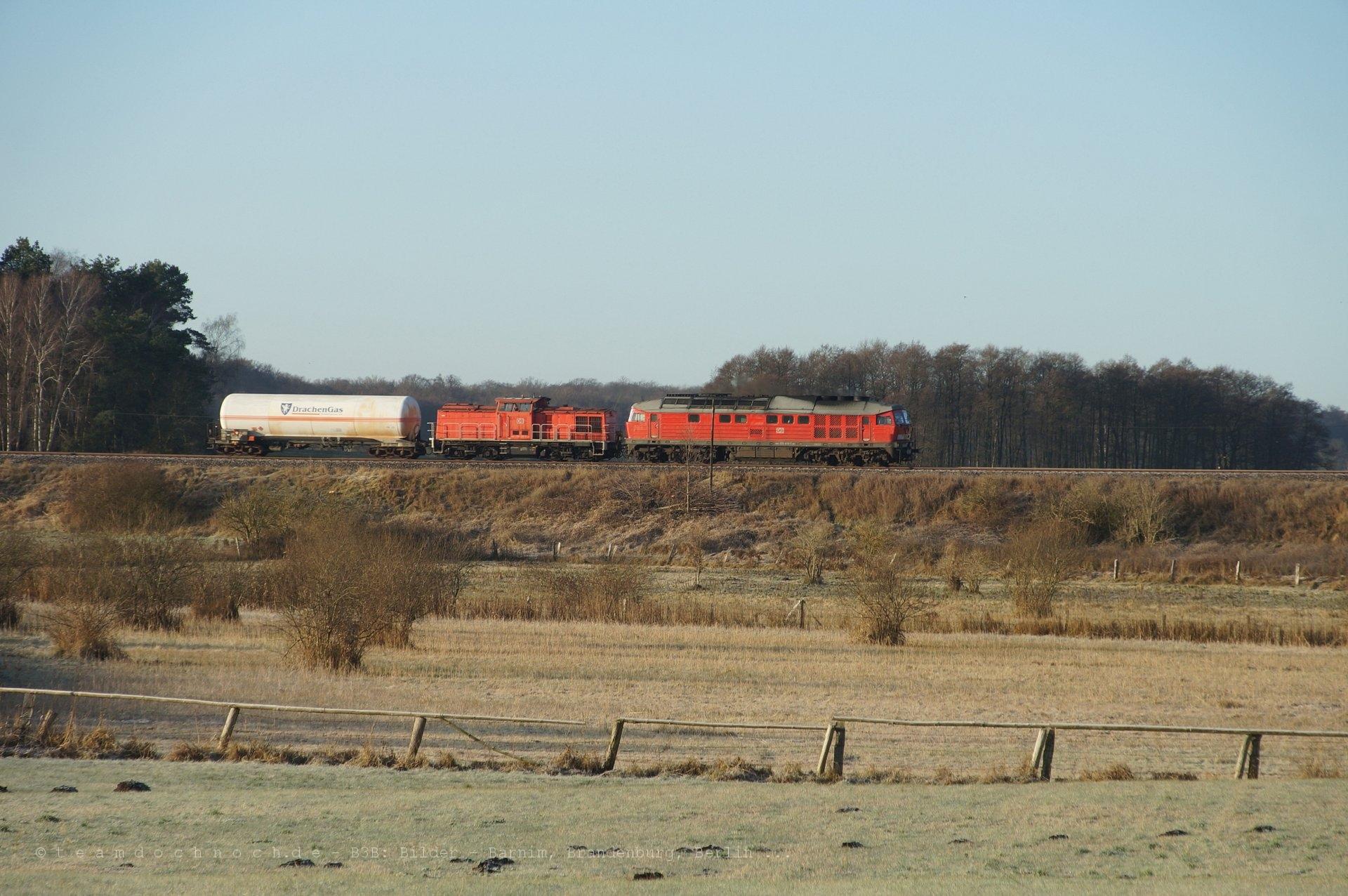 Ein Güterzug auf der Bahnstrecke Britz – Fürstenberg