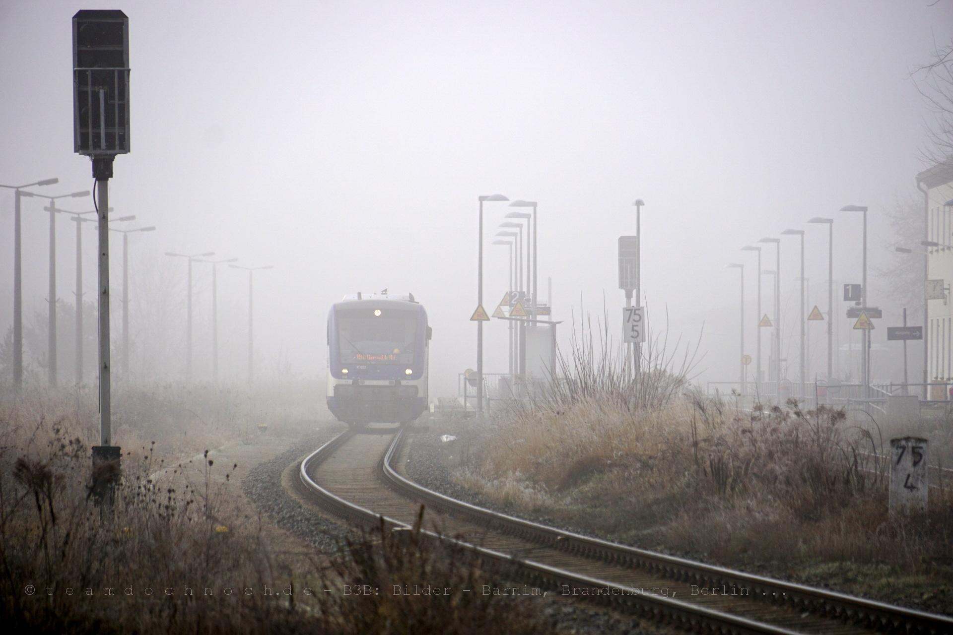 VT002 der NEB wartet als RB60 nach Eberswalde im vernebelten Bahnhof Wriezen