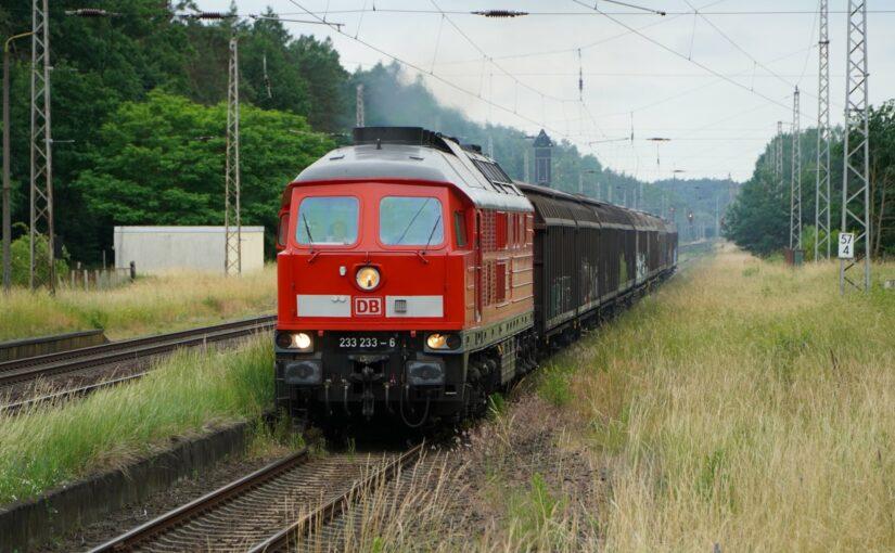 233 233-6 mit ihrem Güterzug in Chorin