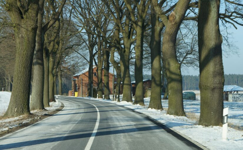 Dierberg im Winter